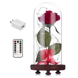 Beauty and The Beast Red Rose kit Enchanted and Led Light wi